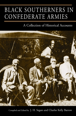 Black Southerners In Confederate Armies A Collection of Historical Accounts