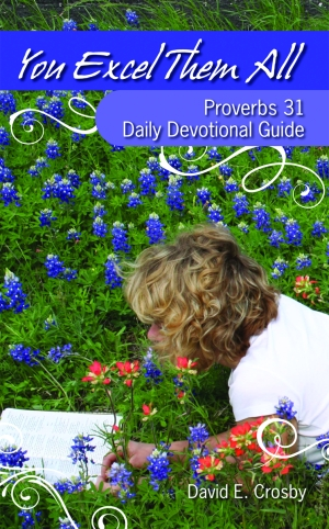 YOU EXCEL THEM ALLProverbs 31 Daily Devotional Guide