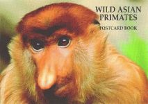 WILD ASIAN PRIMATES POSTCARD BOOK